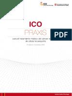 ICOPRAXIS_pulmon_DEF