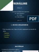 Urinálise (Teórica10 Componentes do sedimento 2)