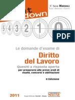 domande-esame-diritto-del-lavoro-1_001-352.pdf