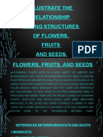 FLOWER,FRUIT, AND SEED