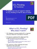 CO2fordummiespdf