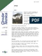 CT0059 Bracatinga.pdf