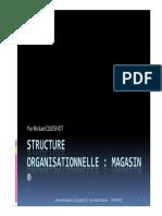 GU SAP Structure Organisationnelle Magasin