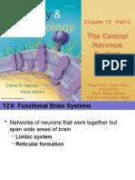 Nervous System.ppt