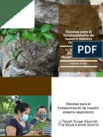 Catálogo plantas medicinales_versión español