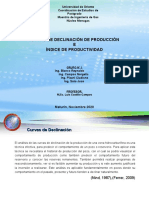 GRUPO N° 2 CURVAS DE DECLINACIÓN DE PRODUCCIÓN E ÍNDICE DE PRODUCTIVIDAD