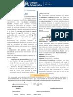 4° Secundaria Hidrocarburos Alcanos GT