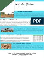 infografia Yuca.pdf