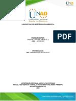 informe laboratorio_ Maria Alejandra Zea_microbiologia unad