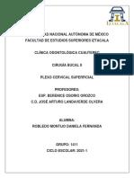 Plexo cervical superficial.pdf