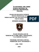 SILABUS-DERECHO-NINO-NINA-Y-ADOLESCENTES__93__0