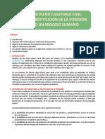 IV, VIII y IX Pleno Casatorio Civil Nulidad y Restitución de La Posesión en Solo Un Proceso Sumario