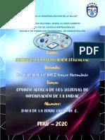 OPINION ACERCA DE LOS SISTEMAS DE INFORMACIÓN DE LA UNDAC - DAGA DE LA TORRE CRISTIAN CLYNTON