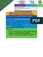 Actividad 1. Ensayo Fertilizantes insec, fungicidas,etc (1).docx