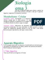 Tema 3 Biología