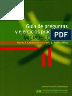 GuiaPreguntas.pdf