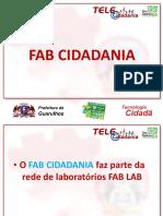 DIT_FAB CIDADANIA_Secretaria do Trabalho.pdf