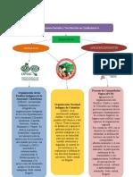 Organizaciones étnicas en Cundinamarca