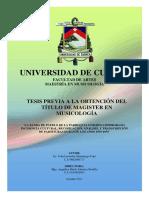 La banda de pueblo de la parroquia Cubijíes-Chimborazo