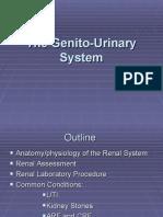Nursing Genito-Urinary System