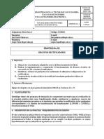 GUIA PRACTICA 2 VIRTUAL LUIS.pdf