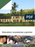 silvicultura ecosistema y gremio (1)