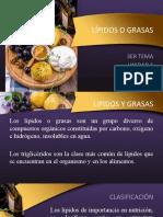 LIPIDOS Y GRASAS