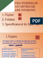 0gestiunea_fisierelor_intr-un_sistem_de_operare_windows.pps