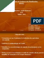 support audit IGFB.ppt
