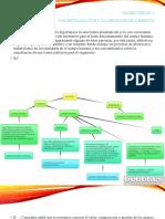 Evidencia Conceptualización y clasificación de alimentos.