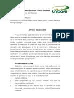 CARGAS COMBINADAS RM.docx