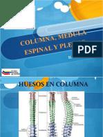 COLUMNA_Y_MEDULA_ESPINAL.ppt(2)