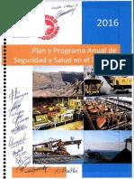 Plan y Programa Anual de Seguridad y Salud en el Trabajo P á g i n a 1 INDICE