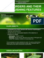 CPRT41A. EXERCISE 2. INSECT ORDERS AND THEIR DISTINGUISHING FEATURES.pdf