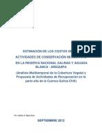 Estimación de costos necesarios en la RNSAB.pdf