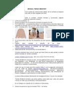 Manual Tienda Mirafest.pdf