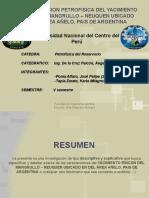 CARACTERIZACION PETROFISICA DEL YACIMIENTO RINCON DEL MANGRULLO –