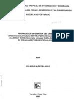 Propagación Vegetativa Del Cristobal, Pilon y Sura Mediante El Enraizamiento de Estacas Juveniles