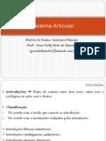 Sistema Articular-anatomia humana-nassau-hibrído
