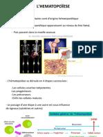 cours_2 hématopoïèse.pdf