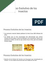 Proceso Evolutivo de los Insectos.pdf