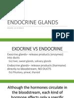 Endocrine-glands