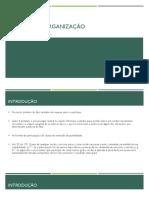 Domínio da Organização.pdf