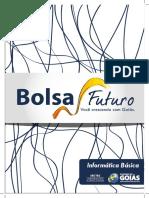 Apostila Informática - Bolsa Futuro