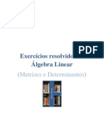 Exercícios resolvidos de Álgebra Linear (Matrizes e Determinantes)
