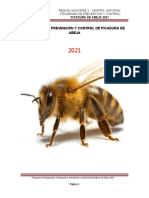 Programa Abeja 2021