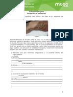 _Valoracion-de-las-heridas-Registro clínico Alexis T. (1)
