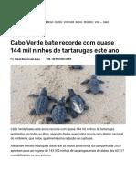 Cabo Verde bate recorde com quase 144 mil ninhos de tartarugas este ano