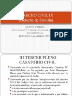 QUINTA UNIDAD III Pleno Casatorio Civil.pptx