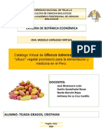 TEJADA GRADOS- CATALOGO OLLUCO.pptx